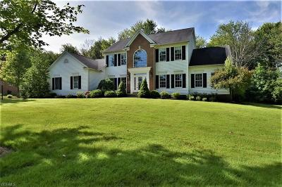 Chagrin Falls Single Family Home For Sale: 8325 Wembley Court