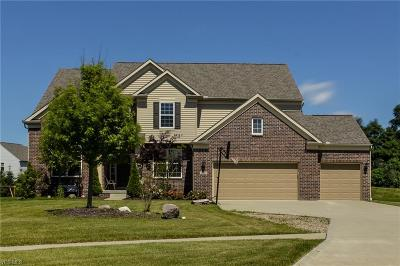 Twinsburg Single Family Home For Sale: 2043 Meadowood Boulevard