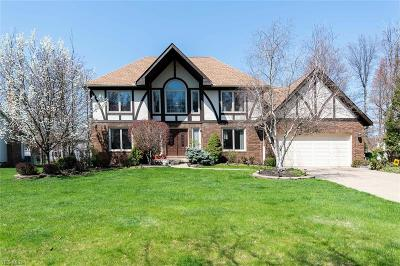 Highland Heights Single Family Home For Sale: 6293 Coldstream Drive