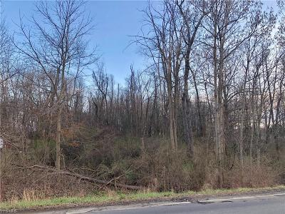 Canton Residential Lots & Land For Sale: Mill Street