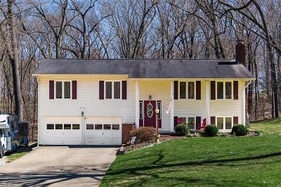 Muskingum County Single Family Home For Sale: 1150 Lectric Ln
