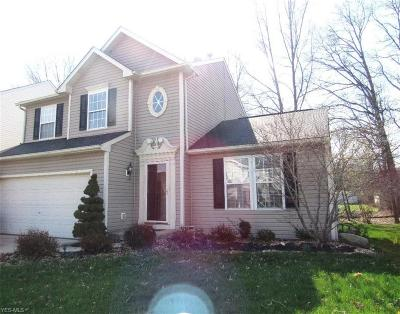 Olmsted Township Single Family Home For Sale: 8566 Wayside Dr