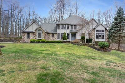 Concord Single Family Home For Sale: 11185 Saybrook Drive
