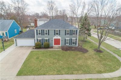 Strongsville Single Family Home For Sale: 17150 Rabbit Run Dr