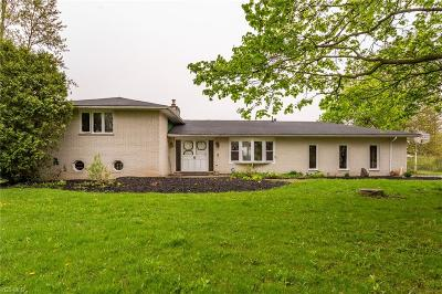 Lorain County Single Family Home For Sale: 14313 Quarry Rd