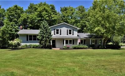 Chagrin Falls Single Family Home For Sale: 1175 Sheerbrook Dr