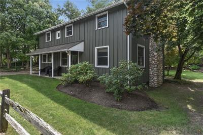 Chagrin Falls Single Family Home For Sale: 25 West Summit St