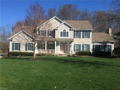 Copley Single Family Home For Sale: 4589 Regal Drive