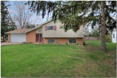 Lorain County Single Family Home For Sale: 3162 Nagel Rd