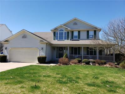 Medina Single Family Home For Sale: 1085 Featherstone Dr