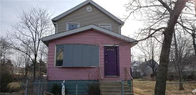 Cleveland Single Family Home For Sale: 3569 East 75th St
