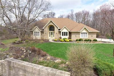 Brecksville OH Single Family Home For Sale: $424,900