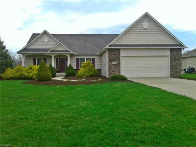 Medina County Single Family Home For Sale: 6615 Scenic Woods Dr