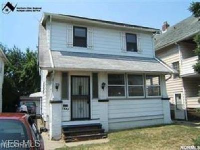 Cleveland Single Family Home For Sale: 1542 East 172nd St
