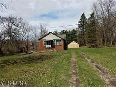 Copley Single Family Home For Sale: 3957 Minor Rd