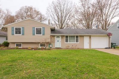 Lorain County Single Family Home For Sale: 42953 Woodhill Dr
