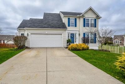 Single Family Home Contingent: 101 Granite Ct