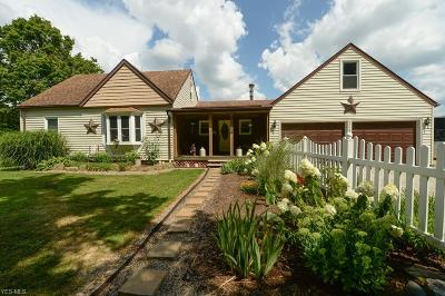 Wadsworth Single Family Home For Sale: 9973 Mennonite Rd
