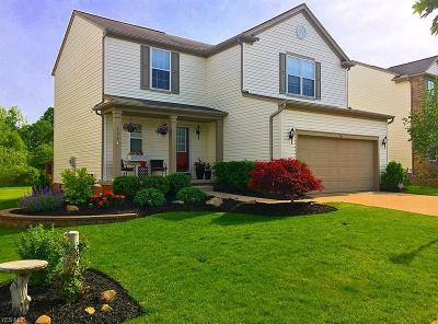 Broadview Heights Single Family Home Contingent: 202 Windham Ct