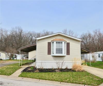 Olmsted Township Single Family Home For Sale: 22 Scenic Dr