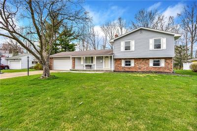 Canfield Single Family Home For Sale: 260 Moreland Dr