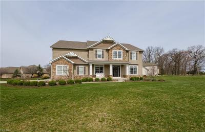 Stark County Single Family Home For Sale: 9085 Emerald Isle Street