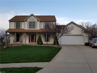 Wadsworth Single Family Home For Sale: 425 Meadowcreek Dr