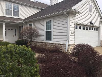 Lorain County Condo/Townhouse For Sale: 33134 Fairport Dr