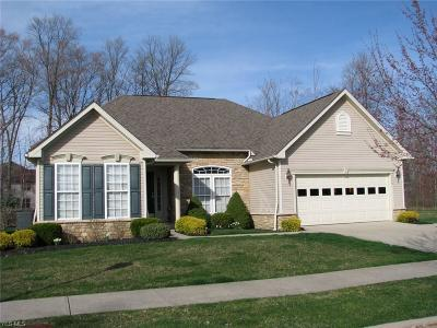 Twinsburg Single Family Home For Sale: 9549 Angela Dr