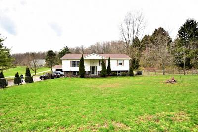 Columbiana County Single Family Home For Sale: 17181 State Route 45