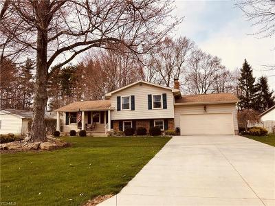 Mahoning County Single Family Home For Sale: 263 Waggaman Cir