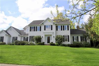 Hudson Single Family Home Active Under Contract: 30 Brandywine Drive