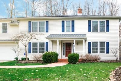 Chagrin Falls Single Family Home For Sale: 60 Hastings Ln