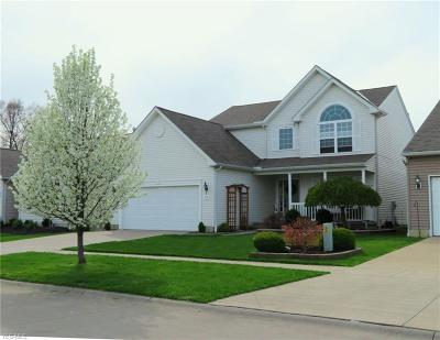 Lorain County Single Family Home Contingent: 4580 Fields Way