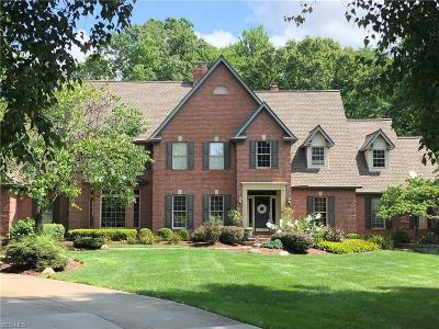 Hudson Single Family Home For Sale: 6943 East Hunting Hollow Ln