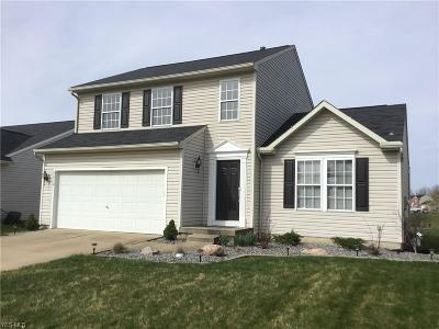 North Ridgeville Single Family Home For Sale: 5410 Fountain Cir