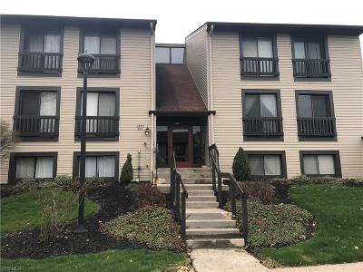 Sagamore Hills Condo/Townhouse For Sale: 6260 Greenwood Pky #303
