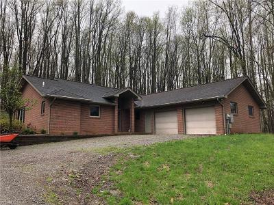 Leetonia Single Family Home For Sale: 38195 Old State Route 344