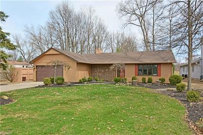 Strongsville Single Family Home For Sale: 8601 Barton Dr