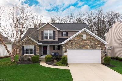 Avon Single Family Home For Sale: 1690 Pine Dr