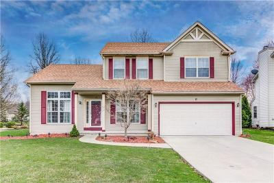 Olmsted Township Single Family Home For Sale: 26961 Valeside Ln