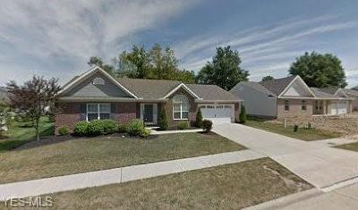 Middleburg Heights Single Family Home For Sale: 16686 Wexford Ln