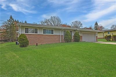 Brecksville, Broadview Heights Single Family Home For Sale: 7993 Longview Dr