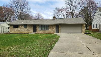 Strongsville Single Family Home For Sale: 11423 Brady Ln