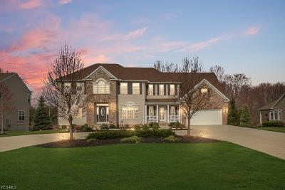 Concord Single Family Home For Sale: 8400 Cambden Crossing Way