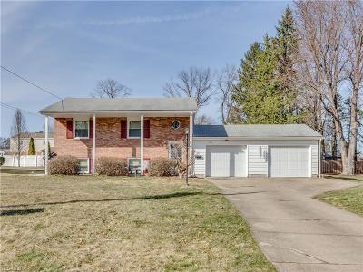 Youngstown Single Family Home For Sale: 3890 Ayrshire Dr