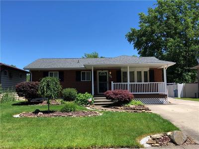 Lorain Single Family Home For Sale: 4001 Caferro Ave