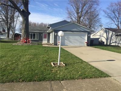 Lorain Single Family Home For Sale: 2720 West 37th St