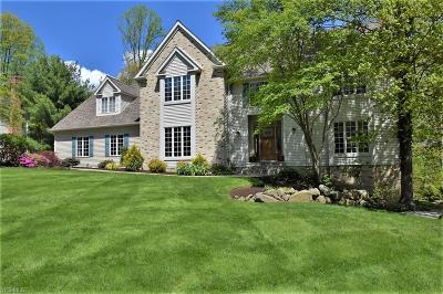 Chagrin Falls Single Family Home For Sale: 17391 Hawksview Ln