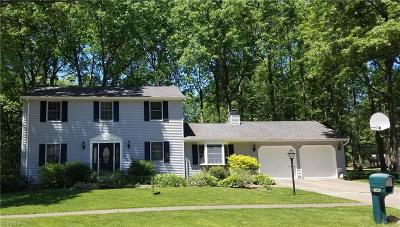 Avon Lake Single Family Home For Sale: 140 Fredericksburg Dr